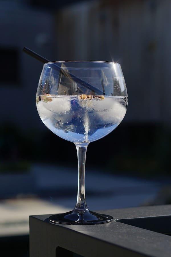 Si bebes Gin-tonic eres más atractivo