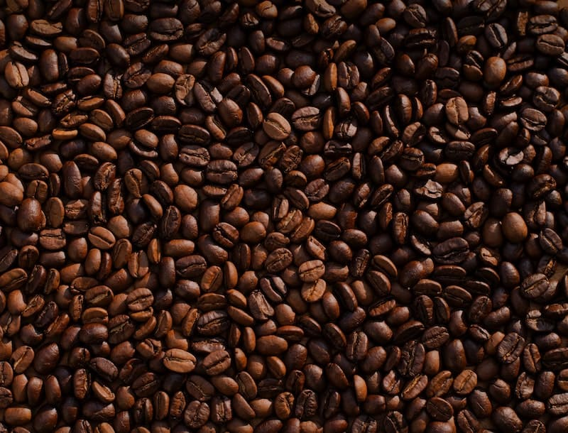Kopi Luwak, el café más caro del mundo